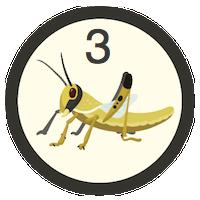 Desert Locust 3